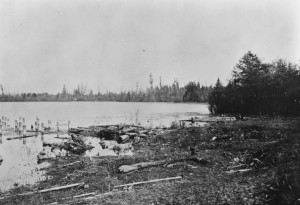This 1903 photo shows the Lake Washington shoreline. (Seattle Municipal Archives Photograph Collection)